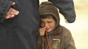 сирия, война в сирии, армия россии, общество, видео