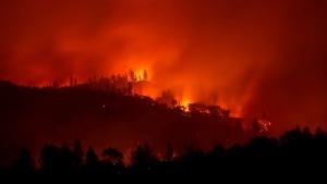 США, общество, происшествия, пожары, калифорния, жертвы