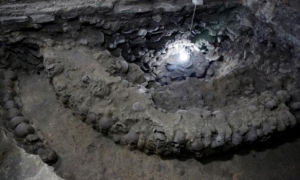 Общество, археология, история, Мехико, башня из 650 черепов, раскопки, исследования