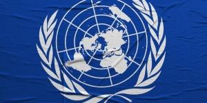 ООН, ДНР, СБУ, переговоры ООН, сотрудник ООН, новости Украины,