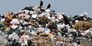 Крым, Севастополь, мусор, мусорные свалки, пожары, происшествия, новости Украины, новости России