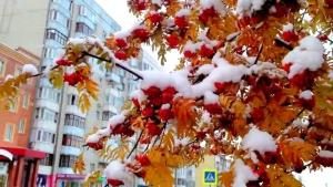 диденко, погода, зима, дожди, мокрый снег, погода в украине, ноябрь, ветер, похолодание