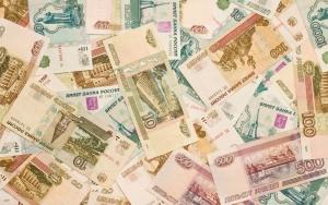 россия, рубль, кот, хозяин, купюра, украл