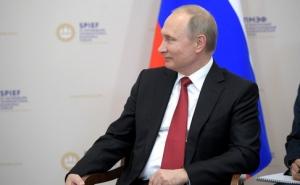 россия, путин, сенсация, интервью, оливер стоун, сенсация, внуки
