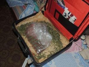 Дзержинск, наркотики, сбыт, арест, МВД, Украина, новости, Донбасс, АТО, опиум, марихуана