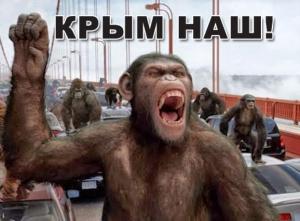 крымский бандеровец, крым, аннексия, россия, общество, новости украины