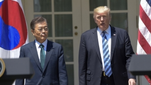 Дональд Трамп, США, Встреча, Мун Чжэ Ин, Лампа