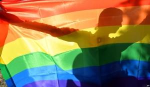 ЕСПЧ, Страсбург, Закон о пропаганде гомосексуализма, дискриминация, Европейский суд