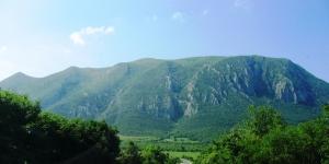 болгария, происшествие, потерянные дети, общество