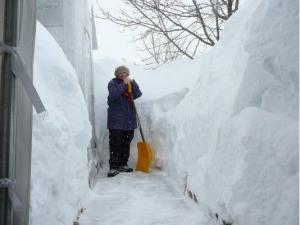 канада, электричество, снегопады