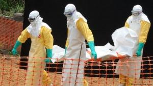 Эбола, вирус, Африка, ВОЗ, чума, Китай, медицина, новости