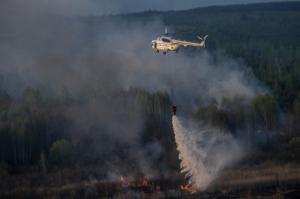 пожар, чернобыльская пуща, тушение