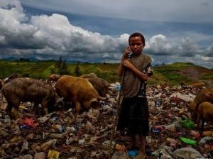 африка, эбола, эпидемия, распространение эболы