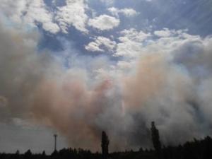 Чернобыль, пожар, МЧС, причина, ГосЧС, происшествия, общество