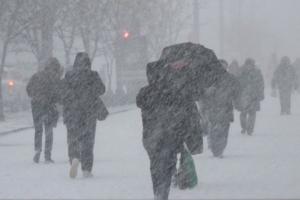 новости, Украина, погода, прогноз, снег, метели, непогода, Старый новый год, январь, Диденко