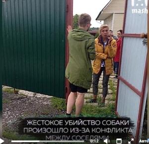 новая москва, убийство собаки, казнь, кадры, фото, хаски, происшествия, новости  россии, скандал, конфликт