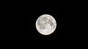 Земля, Луна, НАУКА, Общество, Факты, Открытие.