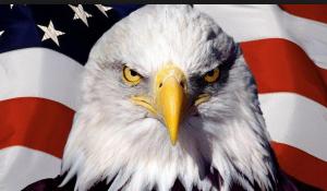 ПАСЕ, США, Россия, ЕС, Украина, Уильям Тейлор, санкции, Евросоюз