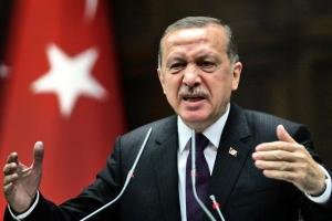 Турция,Россия, торговые отношения, экономика, потери, сбитый СУ-24, нефть покупает турция у игил