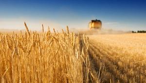 украина, аграрии, посевные, ато