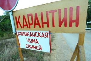 киев, общество, происшествия, медицина, чума