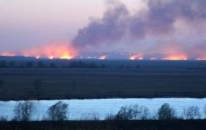украина, днестр, природный заповедник, пожар, ущерб