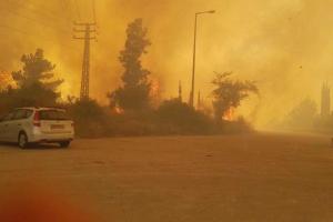 израиль, пожар, огонь