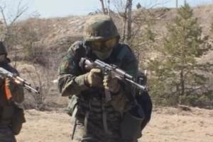 учения, нацгвардия, украина, ато, всу, армия укрианы, грузия, израиль