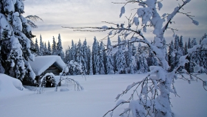 финляндия, природные катаклизмы, общество, происшествие, снегопад