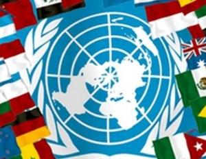 ООН, Ирак, Исламское Государство