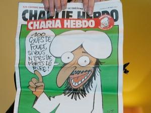 лдпр, сми, антиисламистские карикатуры, жириновский