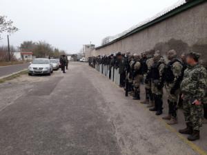 СТЗО, Николаев, происшествия, новости, Украина, криминал, обыск, заключенные