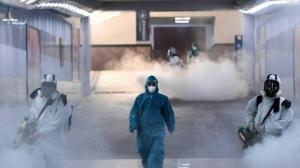 коронавирус,Италия, заболевание, общество