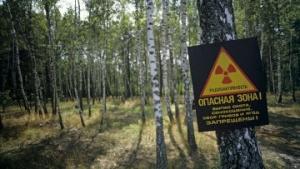 чернобыль, пожар, лес, экология, яценюк, нацгвардия