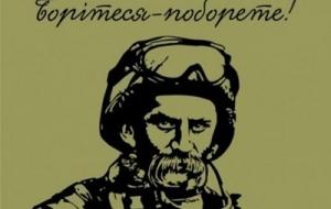 новости украины, общество, политика, шевченко