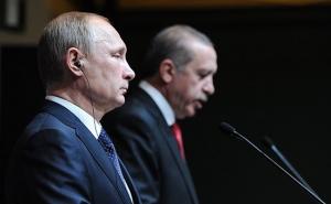 путин, политика, общество, происшествия, эрдоган, париж, франция