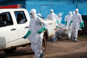 лихорадка эбола, нью-йорк, болезнь