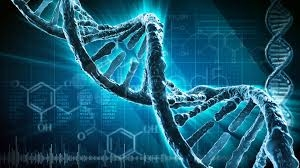 сша, наука, ученые, днк, разум, гены