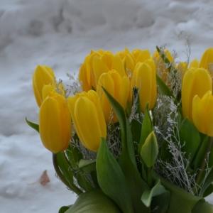 украина, праздники, 8 марта, ссср