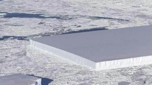 сша, арктика, айсберг, глыба льда, прямоугольник, форма, феноменальный, ученые, исследователи, ледник ларсена, реакция, соцсети, кадры, смотреть фото