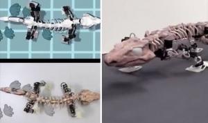 наука, ученые, древности, находка, робот, скелет
