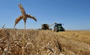 украина, производство, зерно, аромавичус, переработка