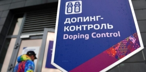 Россия, Международный паралимпийский комитет, Сборная РФ, Паралимпийские игры, Южная Корея