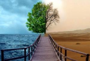 Конец света, предсказания, гибель человечества, цивилизация, смерть, апокалипсис, климат, прогноз погоды, точная дата, вся правда