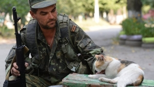 новости украины, мир в донбассе, новости донецка, новости луганска