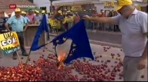 Испания, нектарин, ЕС, протест, Брюсель, общество