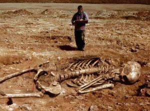 Палеонтологи, динозавры, исполин, Гоби, гуманоид, гипотезы