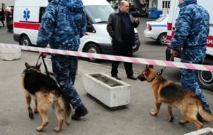 новости Украины, новости Киева, происшествия, криминал, общество