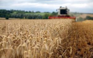 Украина, Аграрный экспорт, Импорт, Статистика,