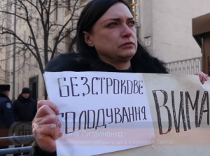 взрывы в сватово, майор литвиненко, жена литвиненко, голодовка, киев, происшествия, общество, видео, украина